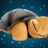 Magická korytnačka-svieti!!!