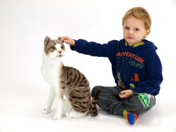 Plyšová sediaca mačka Micka 45cm