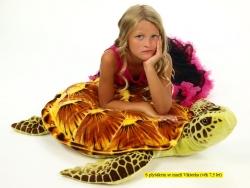 Korytnačka hnedá 95 cm