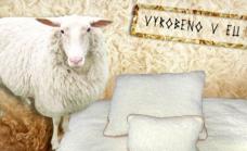 Hrejivá deka a dva vankúše z ovčej vlny